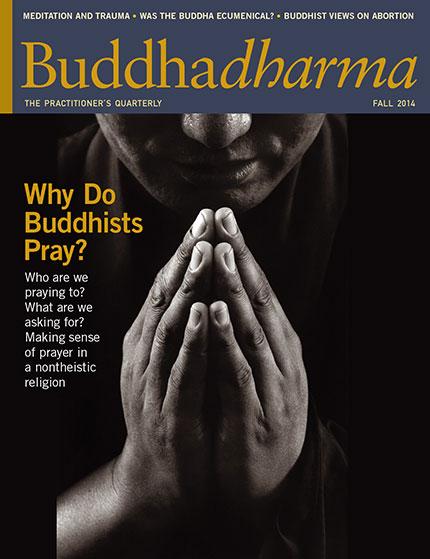 Buddhadharma Summer 2015 Magazine Cover